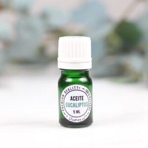 aceite esencial eucaliptus 1 — Humos.cl