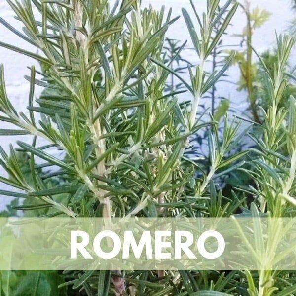 romero res600 — Humos.cl