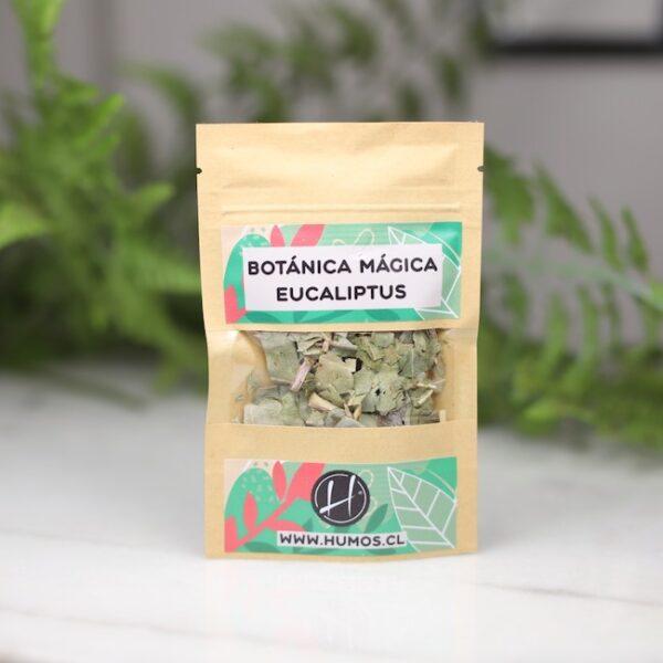 Eucaliptus • Humos.cl