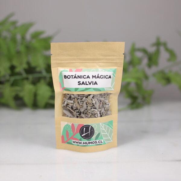 Salvia Humos.cl — Humos.cl